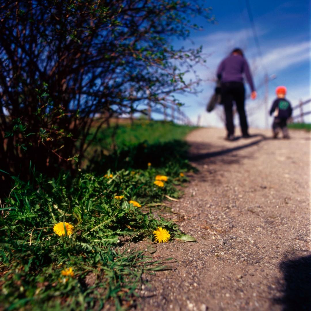 På stien